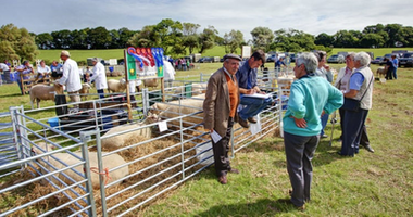 Woolsery Agricultural Show
