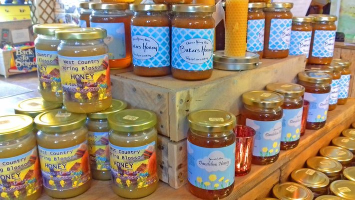 Spring Blossom Honey - Special Offer